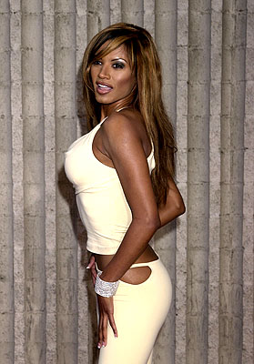 Premiere: Traci Bingham at the Westwood premiere of Dimension's Scary Movie 2 - 7/2/2001