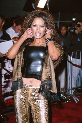 Premiere: Traci Bingham at the Westwood premiere of Warner Brothers' Romeo Must Die - 3/20/2001