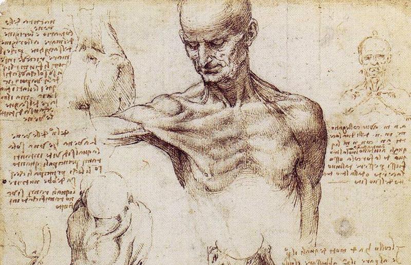 Contour Line Drawing Leonardo Da Vinci : Una de las pasiones leonardo da vinci Ángel y demonio