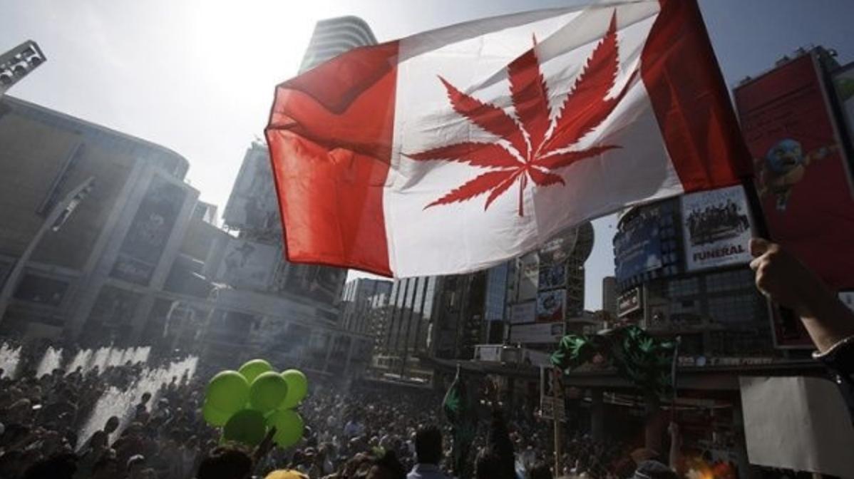 El Senado de Canadá aprueba la ley que legaliza la marihuana