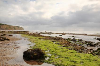 Top 10 des plus belles balades de bord de mer en Grande-Bretagne Top10evasion_05