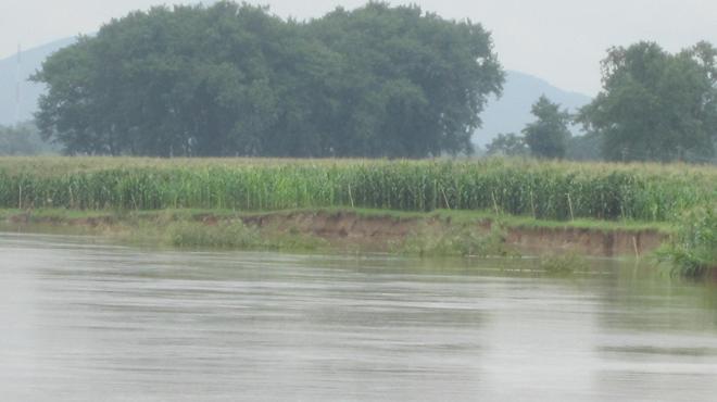 Hàng nghìn hộ dân lo vỡ đê sông Mã