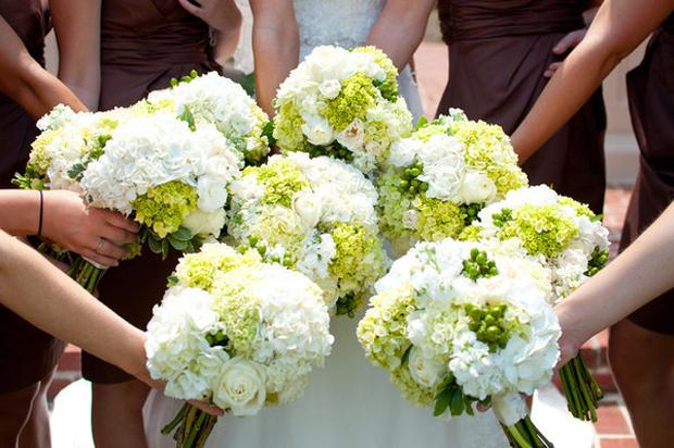 cuoi tap the,hoa cuoi bo tron,hoa dep,dien hoa,dien hoa,dien hoa uy tin,dien hoa ha noi,gui dien hoa,hoa bó tròn,hoa bó dài,hoa 20-10, hoa 20-11, hoa 8-3,hoa van phong, hoa khai trương, hoa sự kiện, hoa tặng bạn, hoa tặng mẹ, hoa tang me, hoa tặng thầy cô, hoa tang thay co, hoa tang ban gai, hoa tặng bạn gái, hoa cam on, hoa tặng thầy cô, hoa tang thay co, hoa dep, hoa sang trong, hoa dep gia re, dien hoa uy tin, điện hoa uy tín, điện hoa trong nước, dien hoa trong nuoc, điện hoa Hà Nội, dien hoa ha noi, dien hoa quoc te, sendflower to Vietnam, dien hoa chuyen nghiep, hoa dep van phong, hoa su kien dep, dien hoa dam bao chat luong, điện hoa đảm bảo chất lượng, hoa tuoi van phong, hoa tươi văn phòng, hoa ngay le dep, hoa ngày lễ, hoa để bàn, hoa de ban, hoa lo, hoa lọ, hoa giỏ, dien hoa uy tin, dien hoa trong nuoc, sendflower.vn, hoa lan, hoa tuoi van phong, dat hoa dinh ky, hoa vip, hoa sang trong, hoa ngay nha giao Viet Nam, hoa ngay quoc te phu nu, hoa ngay phu nu Viet Nam, hoa ngay cua me,hoa mùng 8 tháng 3,hoa cưới tận nhà,hoa sendflower,hoa cẩm tú cầu,hoa cưới tú cầu,ý nghĩa hoa tú cầu