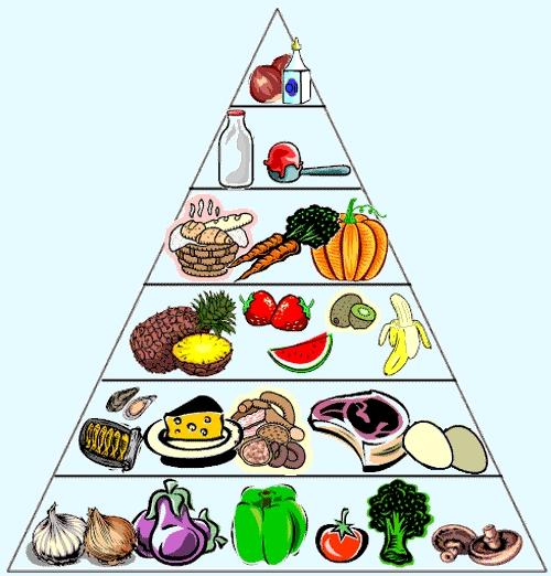 Tháp dinh dưỡng của chế độ giảm cân low carb