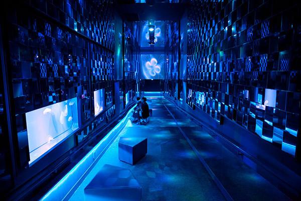 http://www.sumida-aquarium.com/