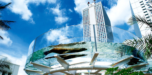 https://www.sunshinecity-global.com/zh-TW/facility/aquarium/