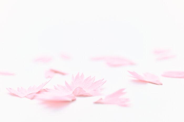 削出來的美麗花朵