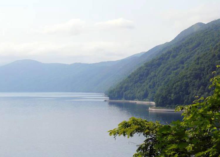 ▲展望台的周邊樹木長得非常茂盛,有點難直接望到支笏湖,但從樹木的中間還可以一望支笏湖的風光。