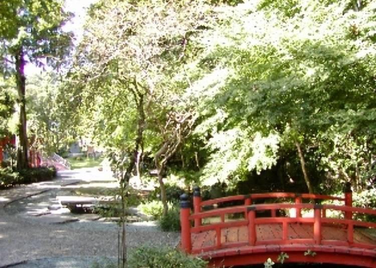 充滿綠意的萬葉公園
