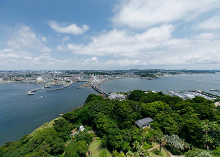 由海蠟燭看出去的藤澤,天氣再好一點還有機會看到晴空塔喔!