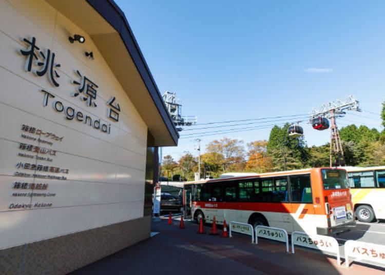 ▲桃源台站前巴士轉乘站上車,前往芒草原