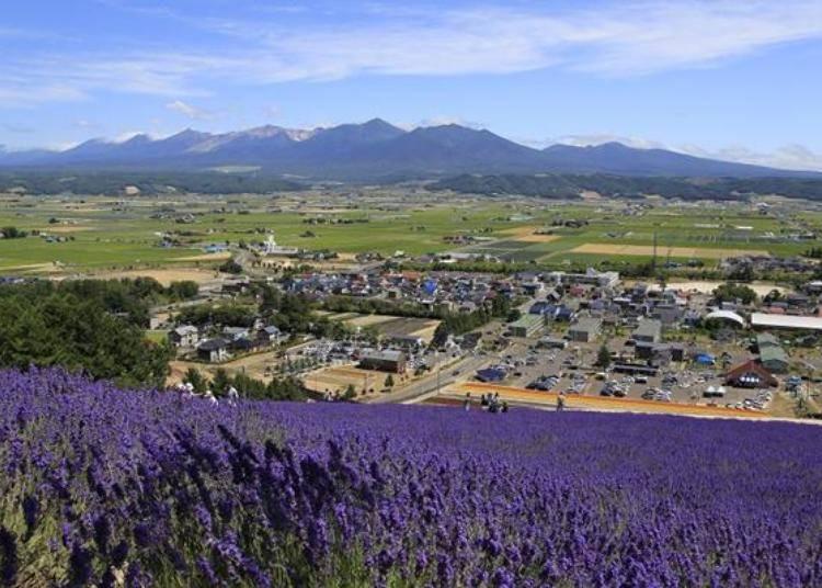 登山吊車到山頂約5分鐘,從山頂上可俯瞰這壯麗的美景。