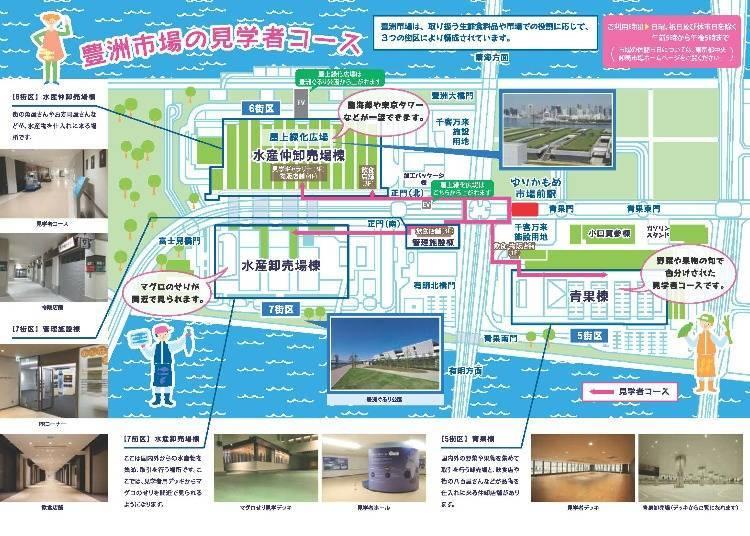 圖片提供:東京都中央批發市場
