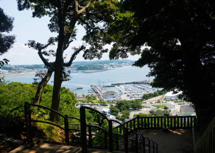 可以看到停了許多快艇的「江之島YACHT HARBOUR」,視野超讚!