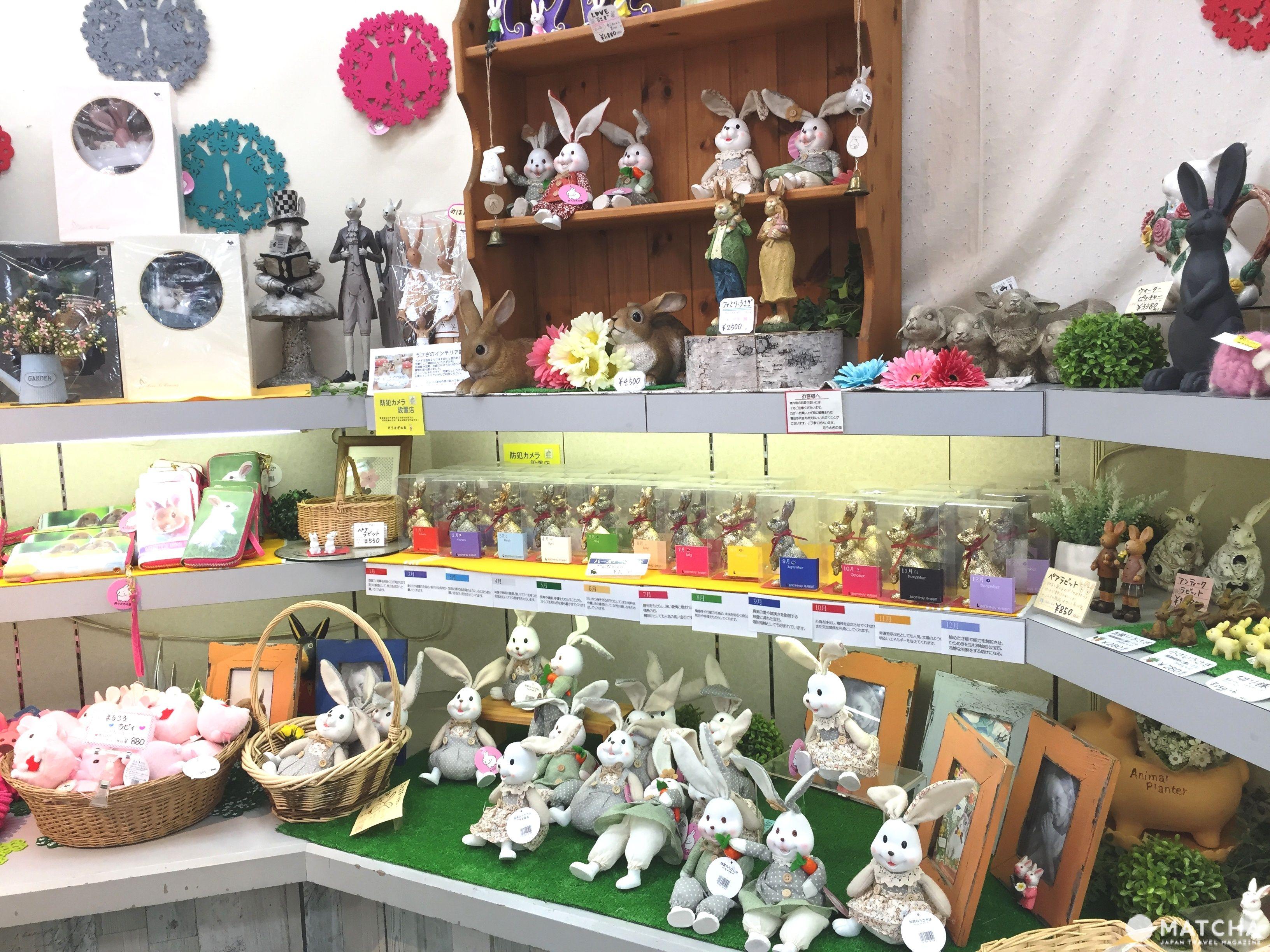 兔迷注意!加賀「月兔之鄉」 親子同遊與兔同樂