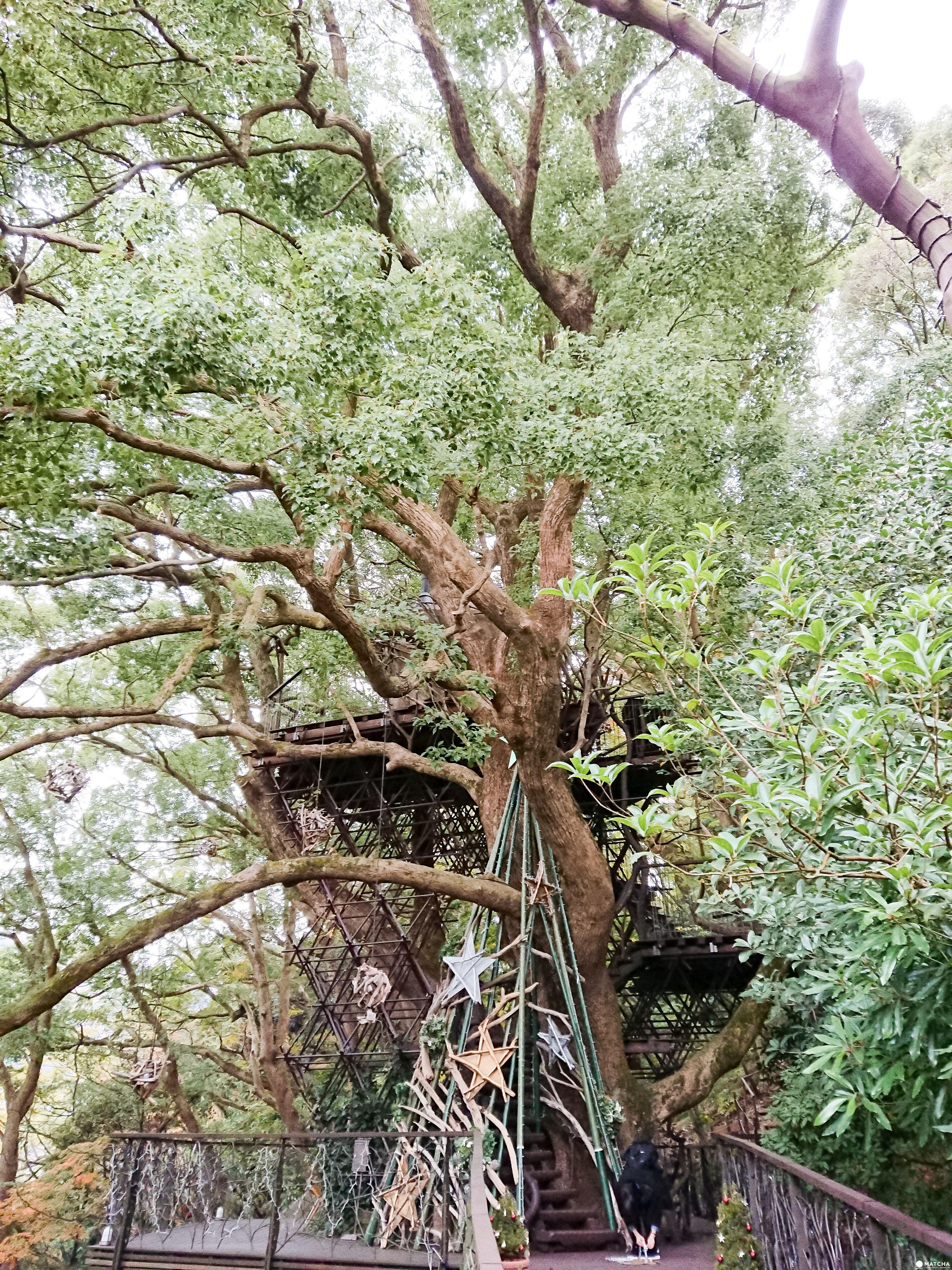 【熱海】家庭渡假溫泉飯店 星野リゾナーレ熱海