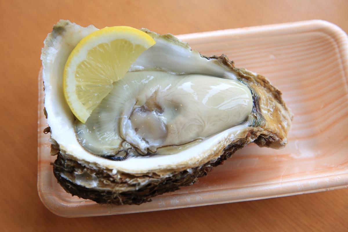 酒田的「岩牡蠣」超級大顆,肉質紮實。