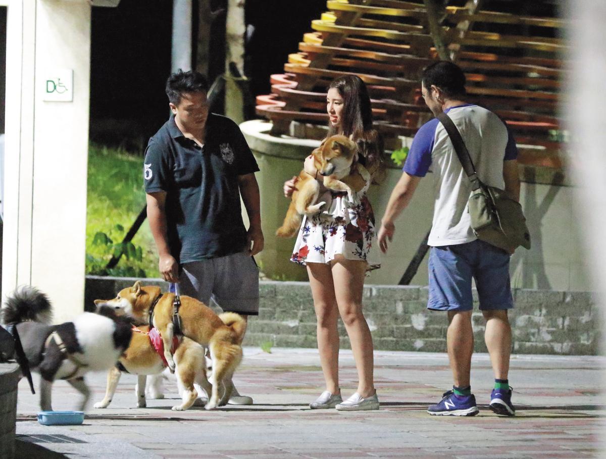 辜莞允(中)與狗友相處融洽,不僅狗愛她,男人也圍繞著她。