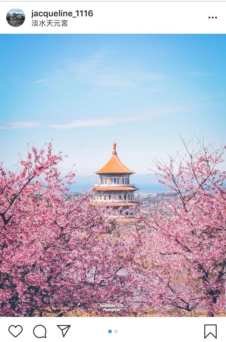 充滿中國風的「無極天元宮」,配上粉紅色的三色櫻景色,真的超迷人!圖:翻攝自instagram jacqueline_1116/開放權限
