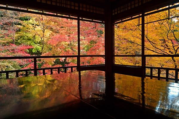 八瀬瑠璃光院秋季美景