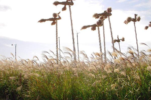 首爾天空公園是世界盃公園之中最近天空的公園。