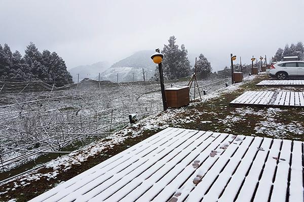 拉拉山雪景 (圖/拉拉山 恩愛農場)