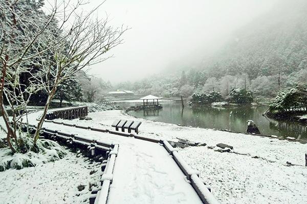 明池雪景 (圖/明池國家森林遊樂區)