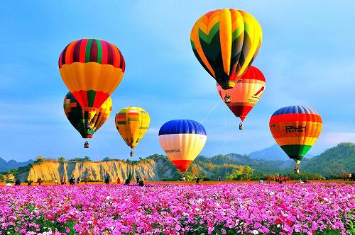 花海繽紛的熱氣球