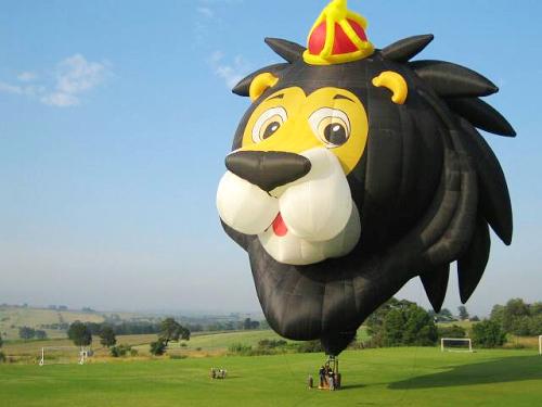 曾獲世界造型排名第二的可愛獅王造型球熱氣球