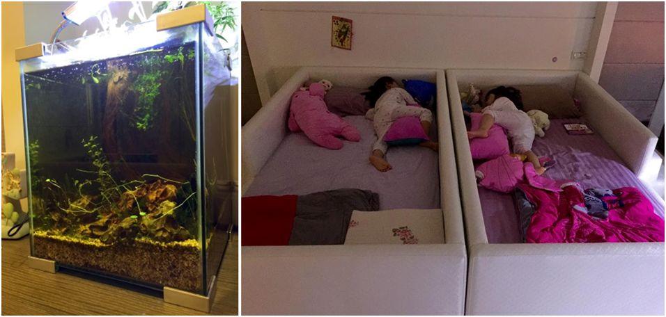 小孩房設計以安全為上,僅有訂製的大木床和阿公送的水族箱。