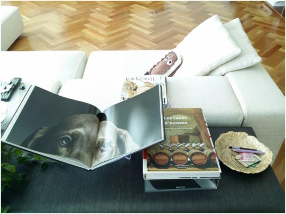 王怡人原本就有收藏精裝書的習慣,每段時期都會鑽研不同的領域。