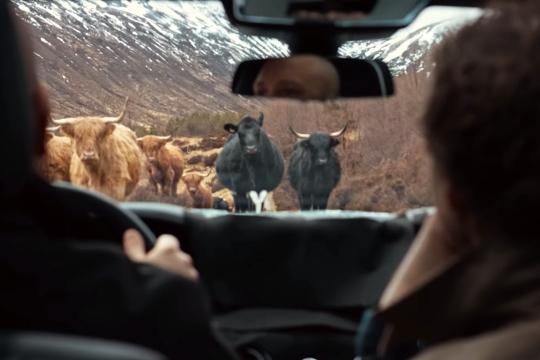哇Cow!!