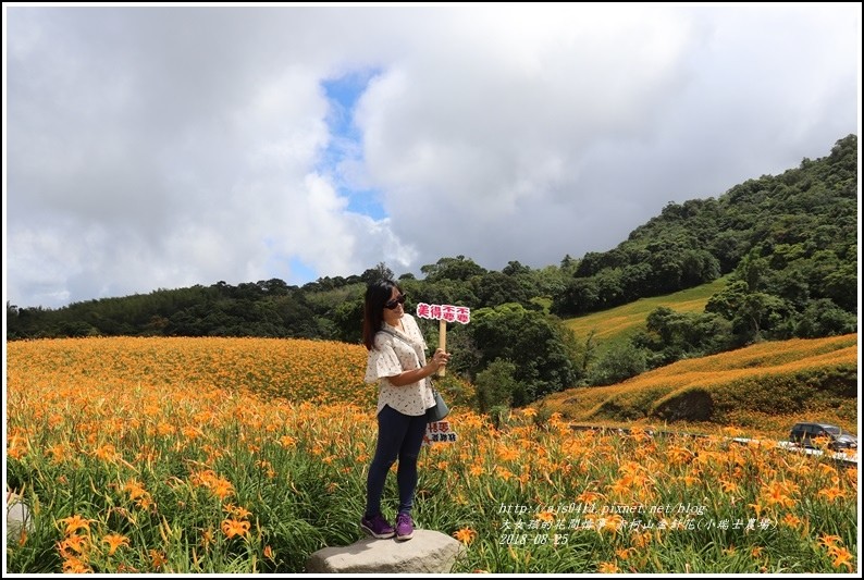 赤柯山金針花(小瑞士農場)-2018-08-36.jpg