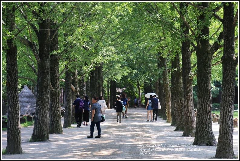 江原道春川市南怡島-2018-08-40.jpg