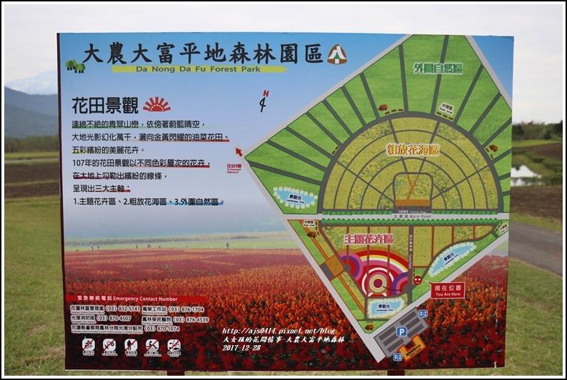 大農大富平地森林主題花海-2017-12-21.jpg