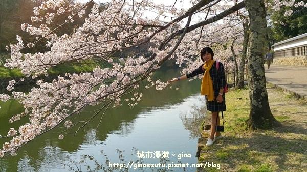 IMG_0403.jpg