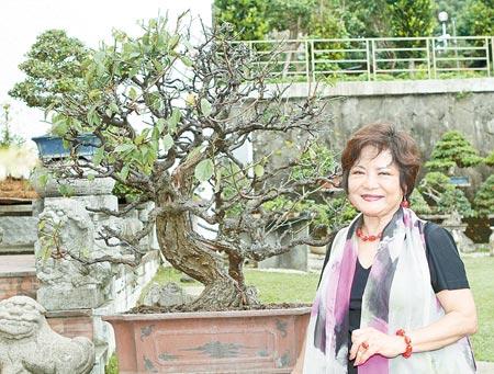 草木皆有情▲國際盆栽大師梁悅美的盆栽園有各式珍稀盆栽,其中還有近350年的盆栽。(張鎧乙攝)