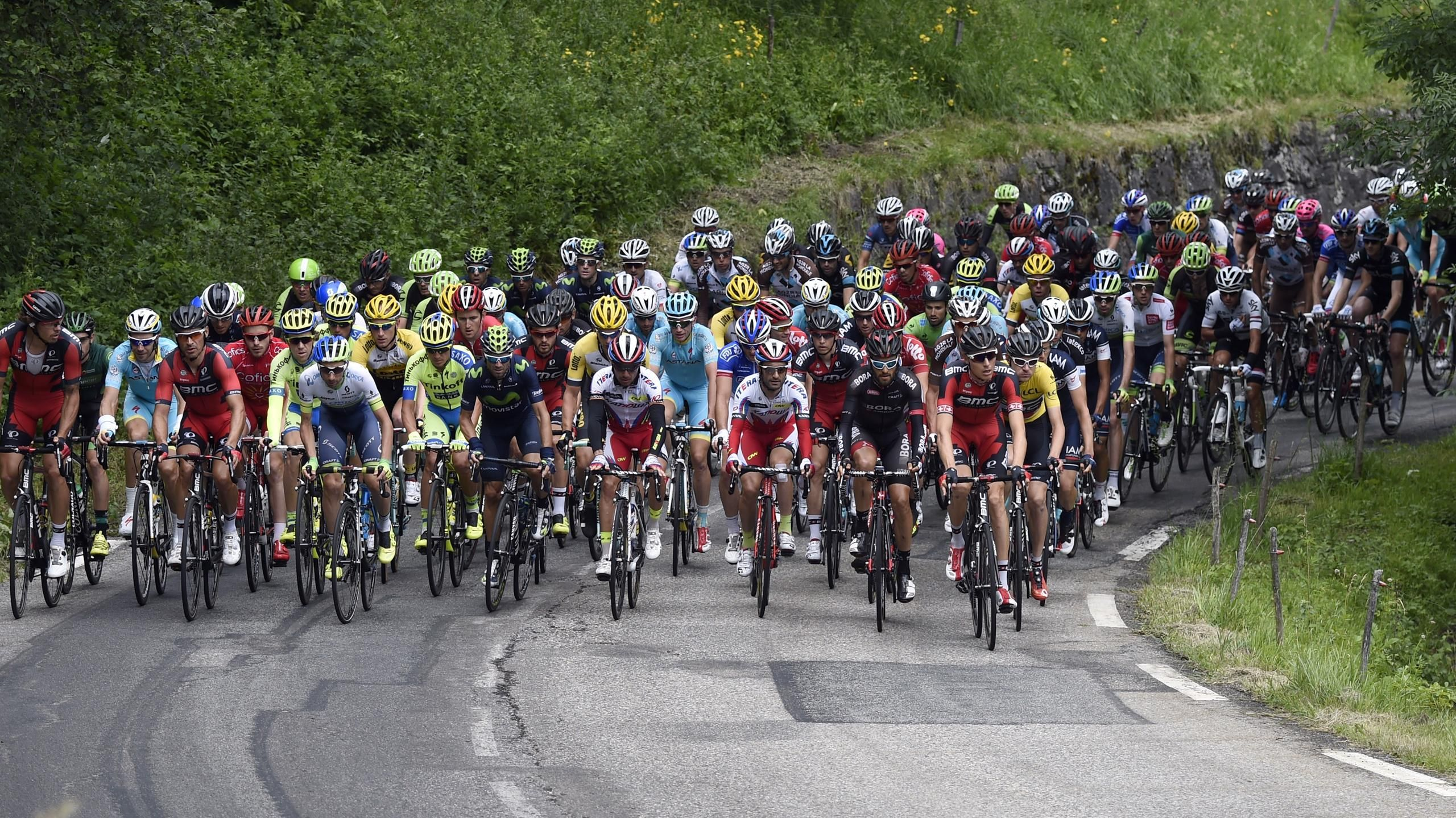 Tour de France - Die Teams, Fahrer und Ausf�lle der Tour