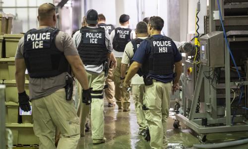 More major US immigration raids likely despite outcry – report