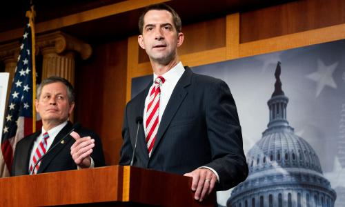 Tom Cotton calls slavery necessary evil in attack on New York Times 1619 Project