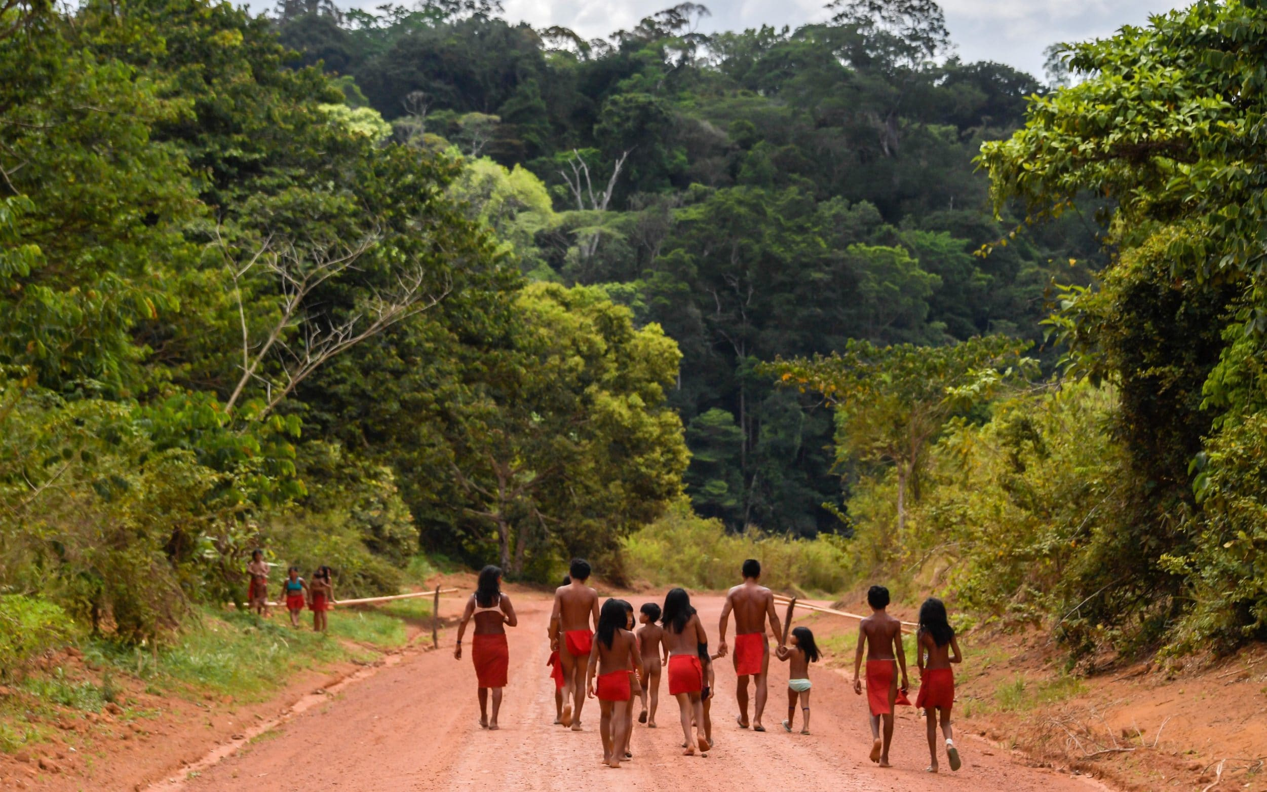 Brazil miners kill tribal leader in Amazon land invasion
