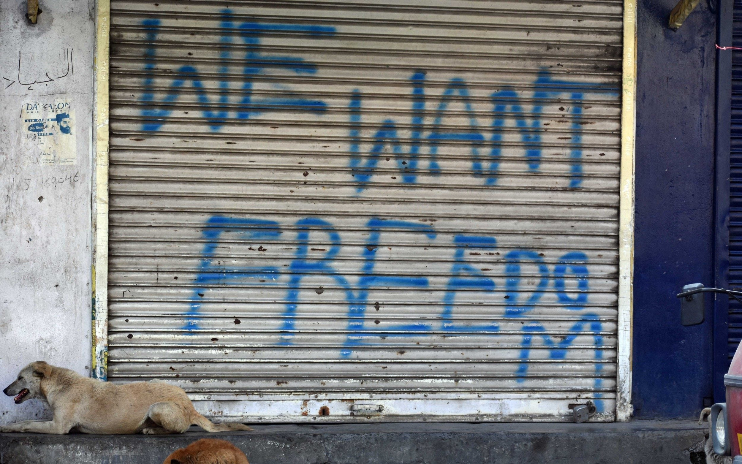 Young boys tortured in Kashmir clampdown as new figures show 13,000 teenagers arrested