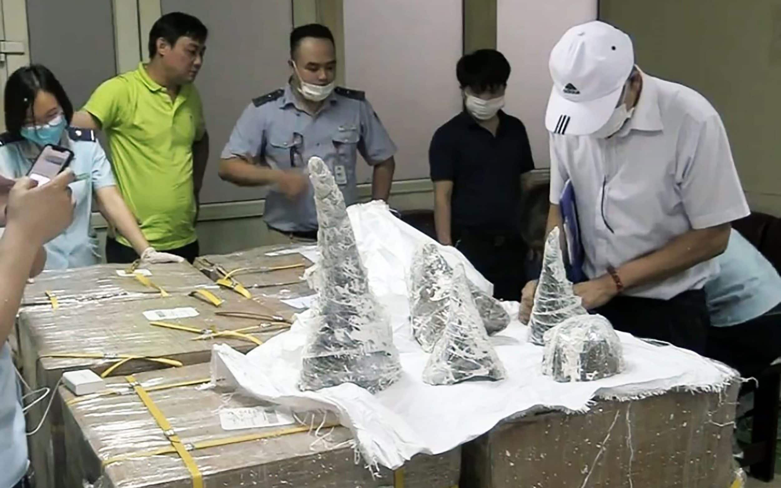 Vietnam seizes 125 kg of rhino horn worth £6m concealed in plaster shipment