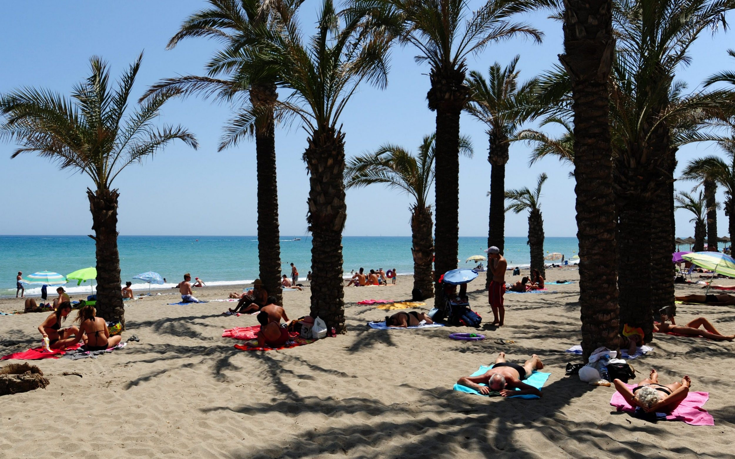 Three members of British family die after drowning in swimming pool at their Spanish hotel