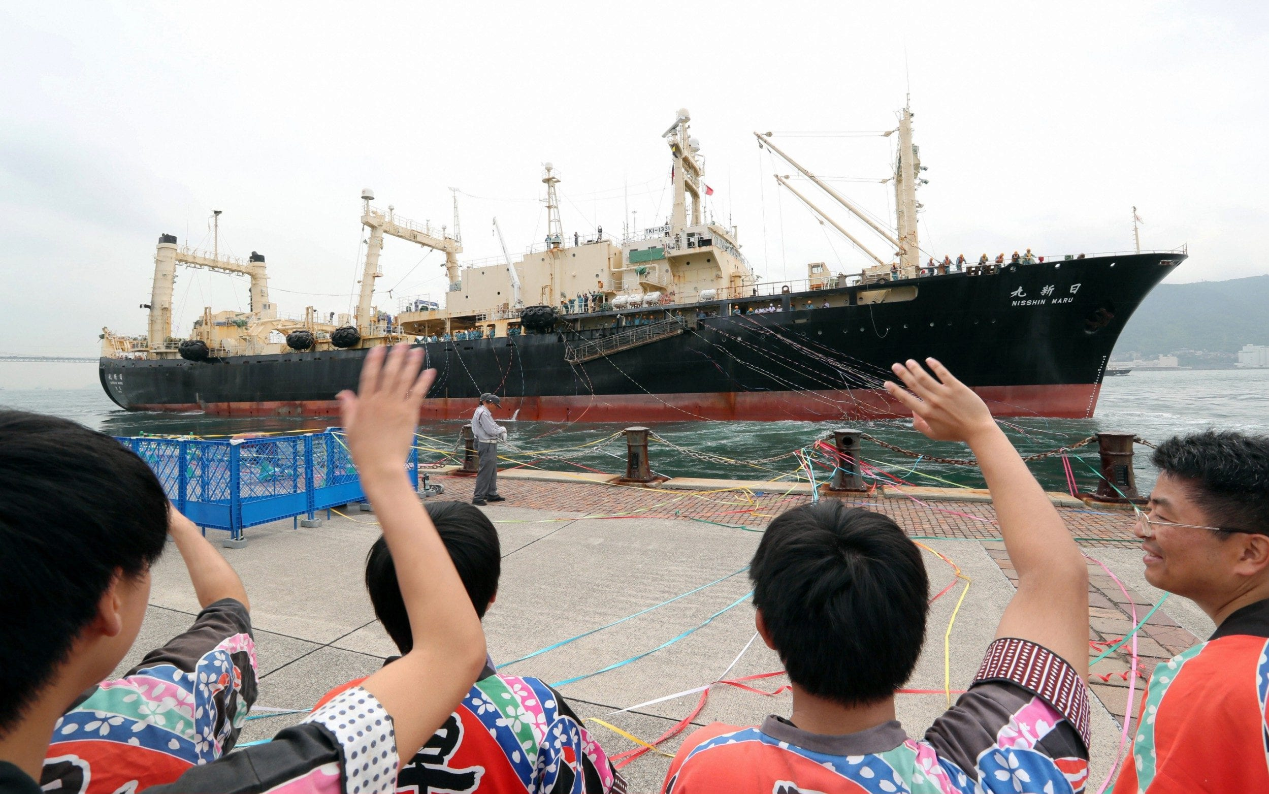 Japanese whalers head out on first commercial hunt for three decades