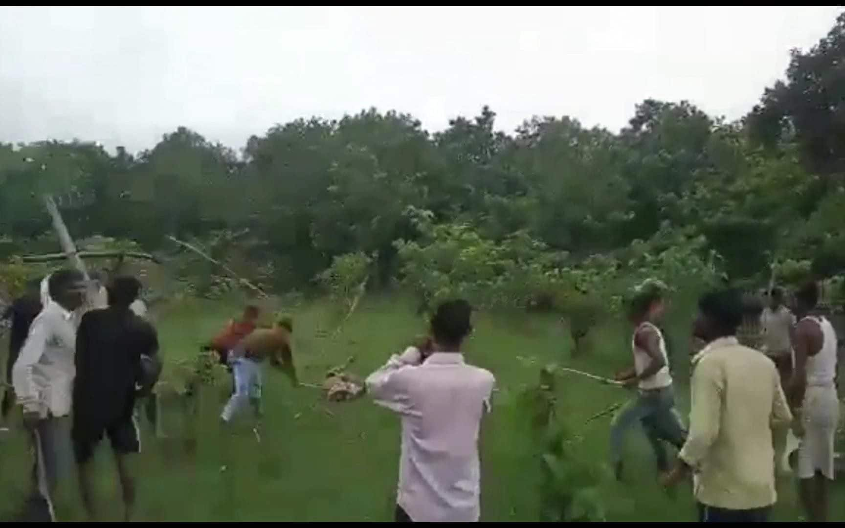 Indian villagers beat tiger to death after attacks