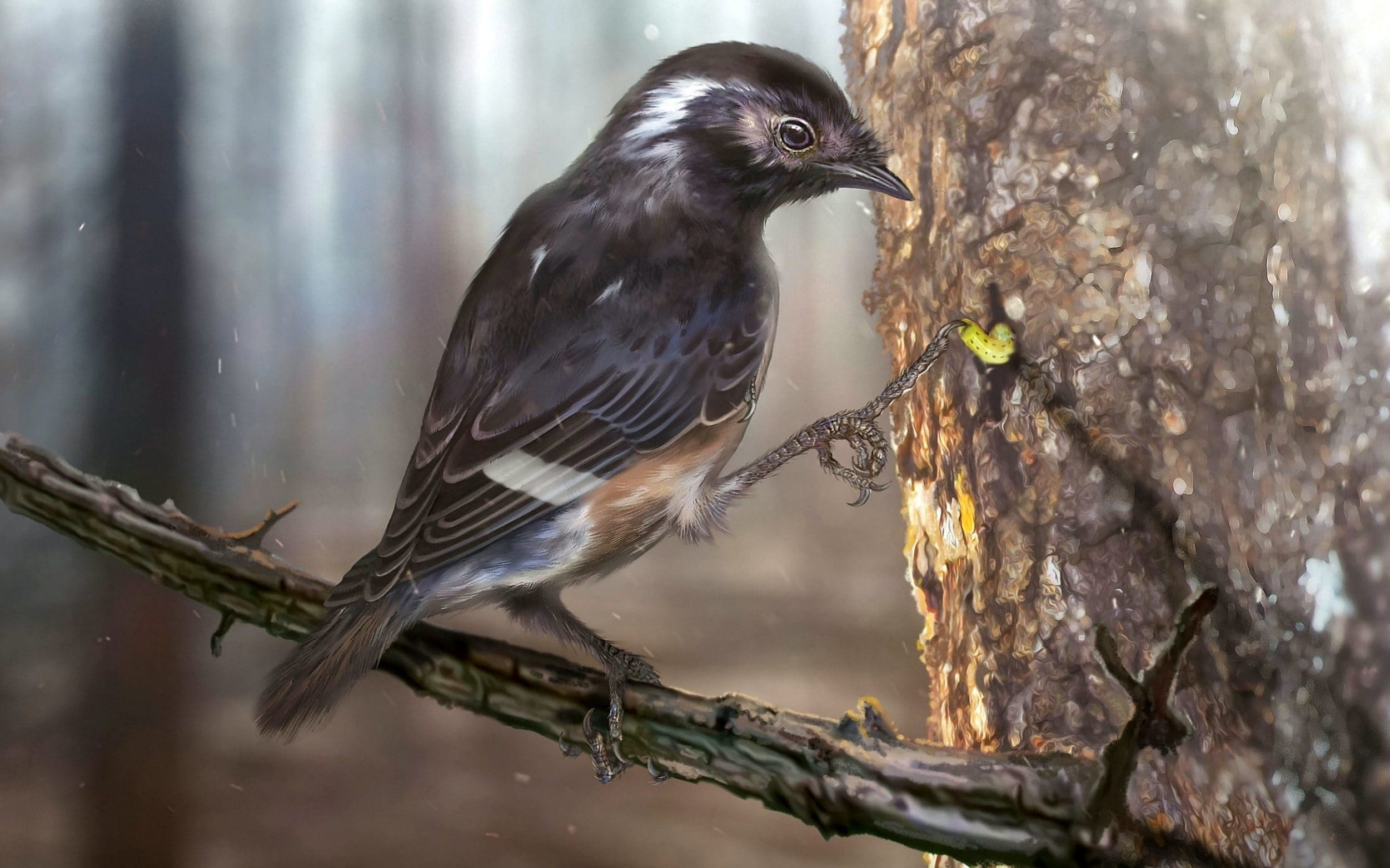 Fossil of 99 million-year-old bird with giant toe found in Burma
