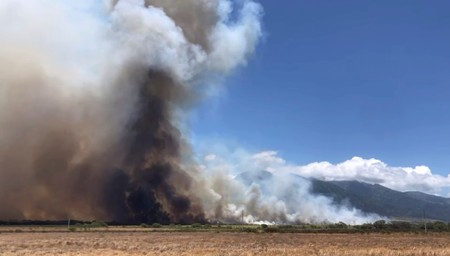 Hawaii governor declares emergency for Maui wildfires