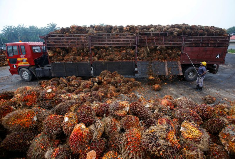 India asks refiners to stop buying Malaysian palm oil after political row - sources