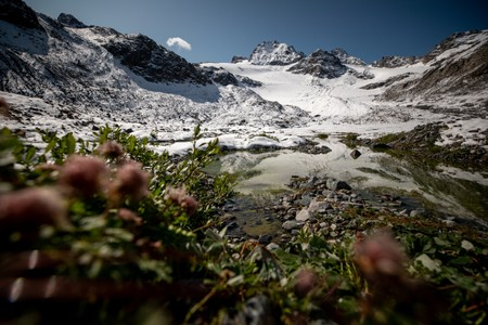 Scientists race to read Austrias melting climate archive